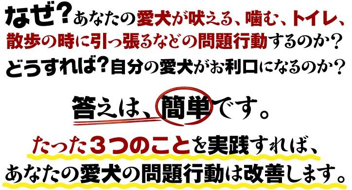 2010y01m13d_084849548.jpg